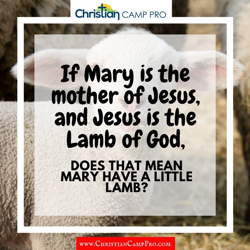 mary had a little lamb joke